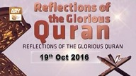 Reflection – 19 October 2016